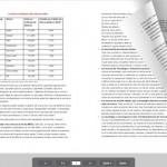 Convierte archivos PDF en una animación con efecto de pasar páginas, con PDF to Flash Page Flip.