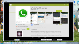 andy os whatsapp