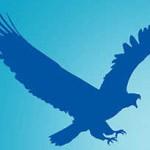 EagleGet - Download Accelerator
