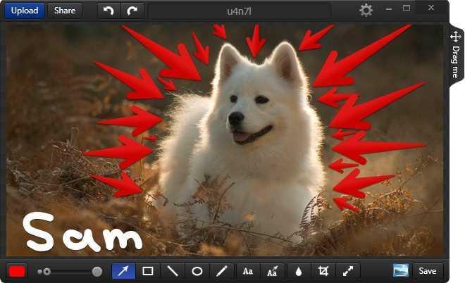 capturar imágenes