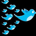 aumentar-seguidores-twitter